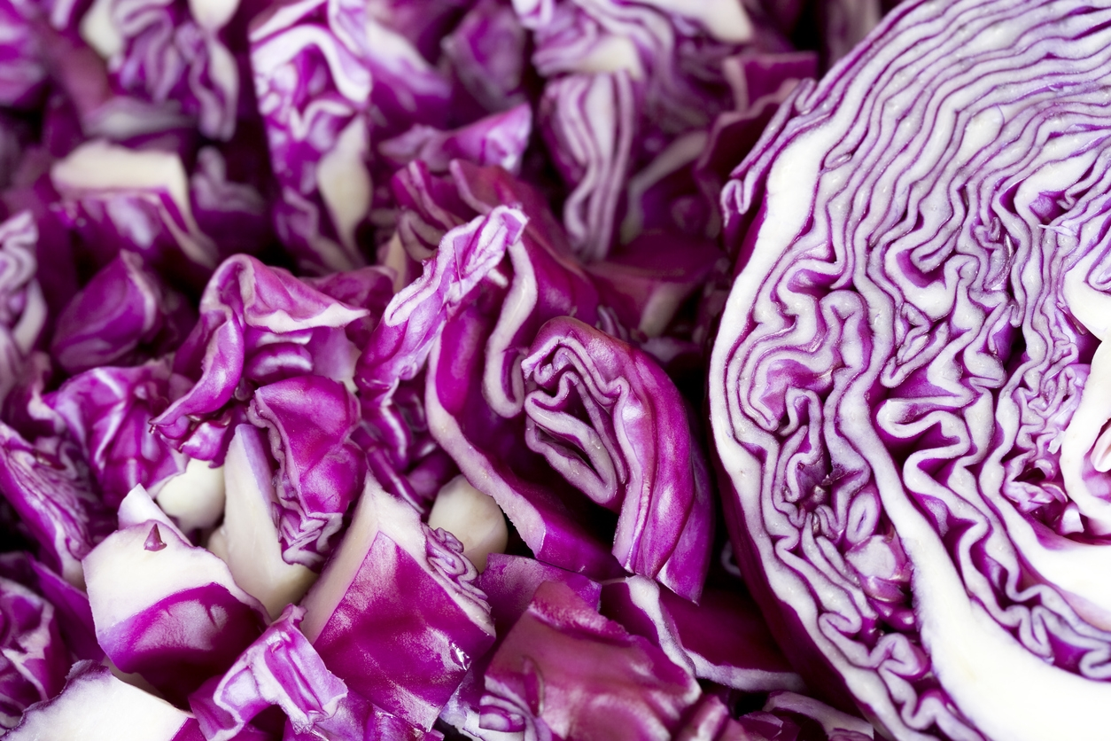 New Product: Red Cabbage