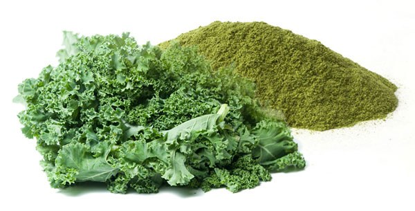 Featured Product: Kale